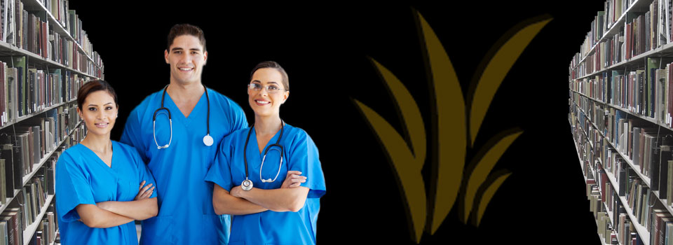 Healthcare Programmes